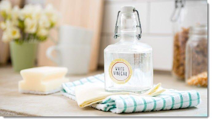 White Vinegar for Home Cleaning