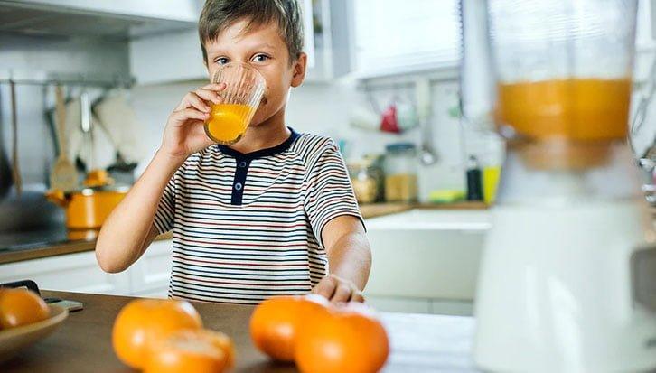 Blender Juicer Combo Juice